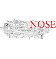 nose word cloud concept vector image vector image