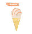 orange ice cream in coneorange fruit taste vector image vector image