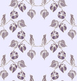 Physalis pattern4 vector image vector image