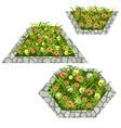 set of flowers to create garden scene vector image