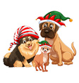 Three cute dogs with jester hats vector image vector image