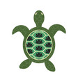 turtle cartoon with decorated tortoiseshell vector image vector image