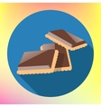 chocolate cracker cookie flat icon vector image