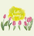 background with watercolor tulips and hand drawn vector image vector image