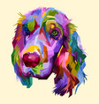 colorful cocker spaniel dog isolated on pop art vector image vector image