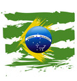 flag of brazil symbol vector image