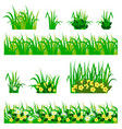 flowers in grass set vector image