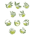Green tea dish and cup icons set vector image