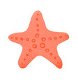 Cartoon style grunge sea star isolated