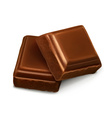 Chocolate pieces vector image