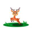 cute little deer jumping in grass vector image