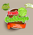 fresh cabbage logo lettering vector image vector image