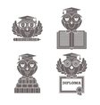 Owls in graduation caps set vector image
