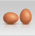 realistic brown chicken eggs natural and healthy vector image