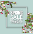 spring sale square banner with sakura vector image