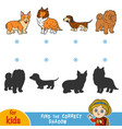 find correct shadow set dogs vector image vector image