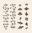 floral elements for decoration set vector image
