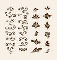 floral elements for decoration set vector image