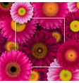flowers border with frame vector image