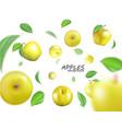 flying yellow apples advertising fresh vector image