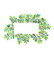 palm leaves rectangle wreath watercolor for summer vector image vector image