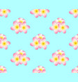 pink plumeria frangipani seamless on light blue vector image