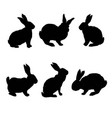 rabbit silhouette vector image vector image