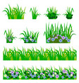 set of garden flowers in grass isolated on white vector image