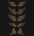 set of golden wings on dark background vector image vector image