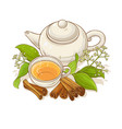 cinnamon tea vector image vector image