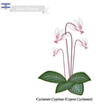 Cyclamen Cyprium The National Flower of Israel vector image vector image