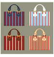Female bags vector image vector image