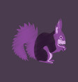 flat shading style icon squirrel vector image