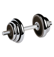 isolated barbell vector image