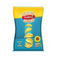 package design of snacks or chips template vector image