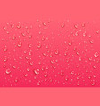 realistic transparent water drops pure condensed vector image