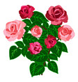 rose bouquet isolated on white background vector image