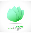 green leaves logo with shadow eco symbol vector image