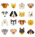 heads home pets funny dogs in flat style vector image