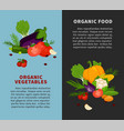 healthy organic vegetables fresh healthy food vector image vector image