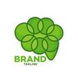 modern leaf brain logo vector image vector image