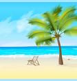 seashore and starfish sky and palm tree vector image vector image