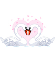 white swans in love vector image