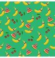 a watermelon vector image vector image