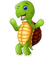 cute cartoon turtle standing vector image vector image