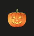 halloween pumpkin with black background vector image