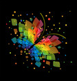 splash butterfly on black background vector image vector image