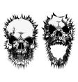 stylized skulls vector image vector image