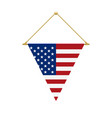 american triangle flag hanging vector image