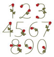 Floral alphabet Red roses with shadow from 0 to 9 vector image